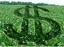 AGRICULTORES, ABRAM OS OLHOS:  NÃO SE DEDIQUEM APENAS Á ETAPA POBRE DO AGRONEGÓCIO.