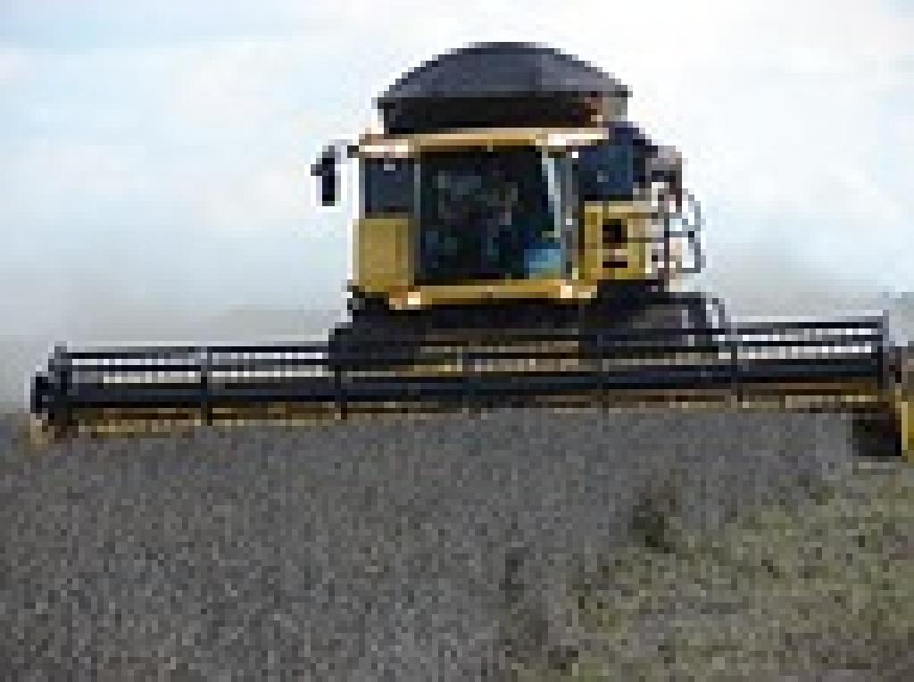Aprosoja/MS estima superar 7 milhões de toneladas de soja na safra 2015/2016.